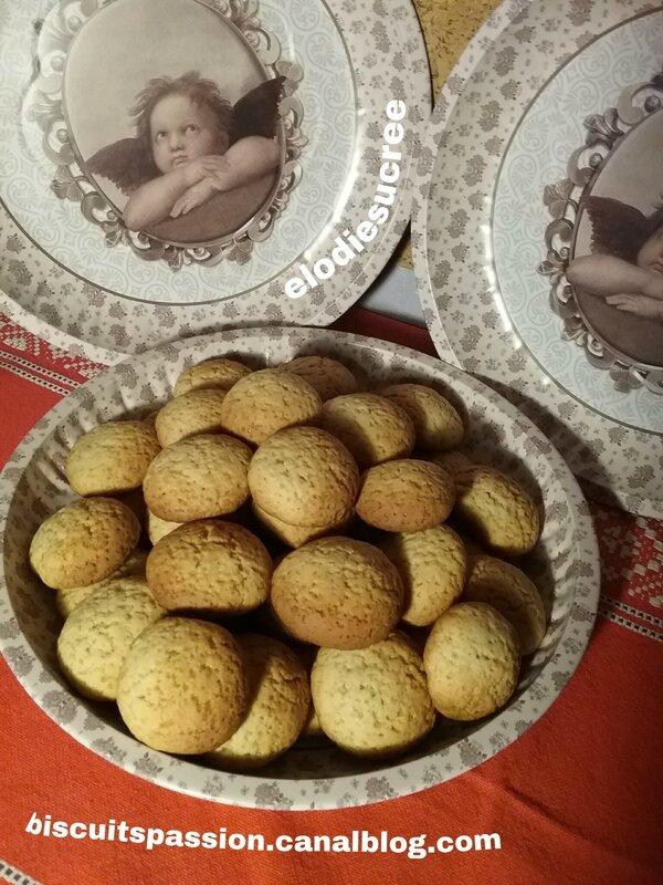 Biscuits au gingembre frais et au miel 066