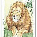 Le lion krüger