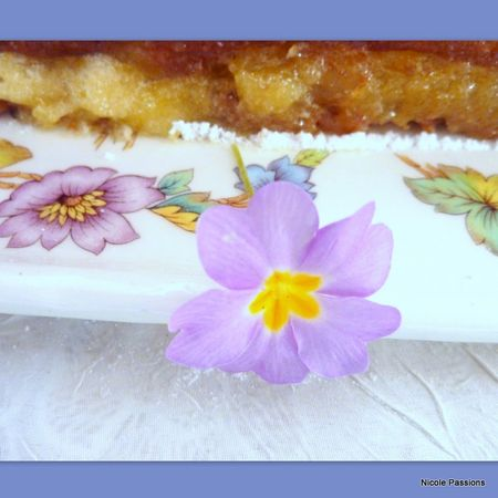 gateau_pommes_calissons25