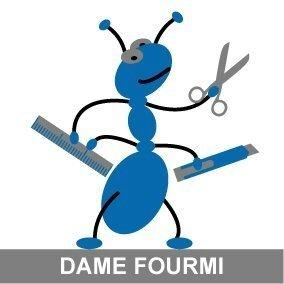 dame-fourmi-logo-1455014440