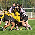 HORNETS_2011-10-16_RCP15_DOM_BIC_PICT0289