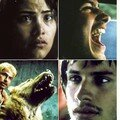 Amores Perros [amours chiennes]