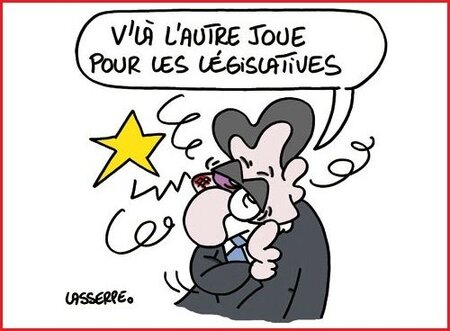 sarko legislatives