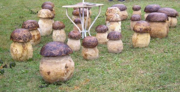 Les champignons parcourir mon quercy - Les champignons de jardin sont ils comestibles ...