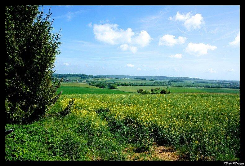 Paysage parc naturel regional du vexin fran ais for Parc naturel yvelines