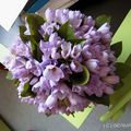 bouquet de freesia