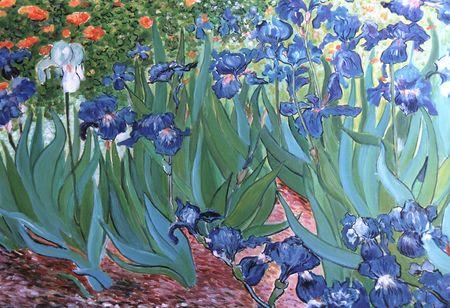 Iris_de_Van_Gogh