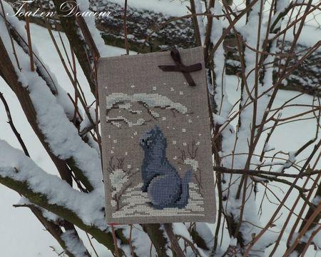 chaton dans la neige