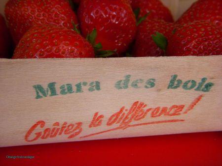 mara_barquette