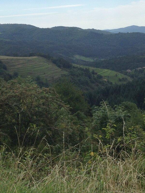 L'agriculture se pratique -encore- en terrasses, appelées faïsses