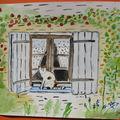 Chat sur la feêtre