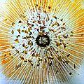 curcuma saupoudré sur nappe land-art yurtao 2