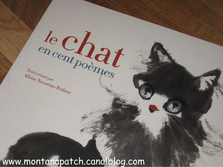 Montanapatch_livre_chat_1