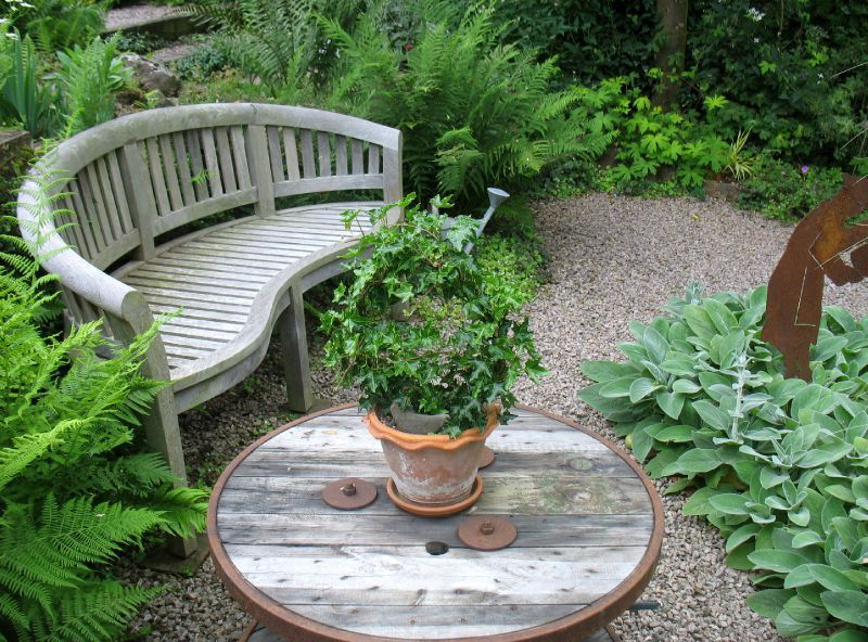 Un jardin de l 39 ombre calli 39 canthus le jardin for Jardin expose nord
