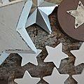 Inpiration nature (2) pour un noël dans les étoiles