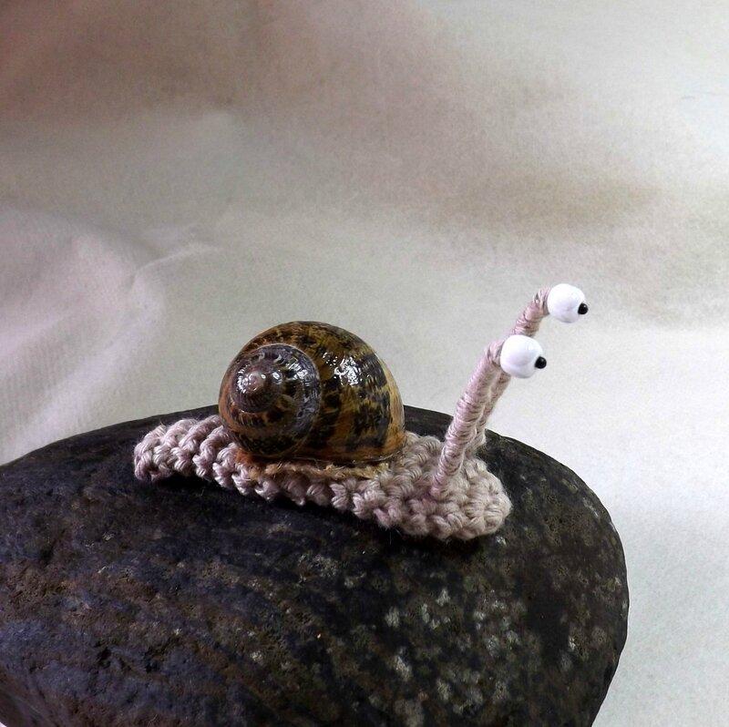 escargot2