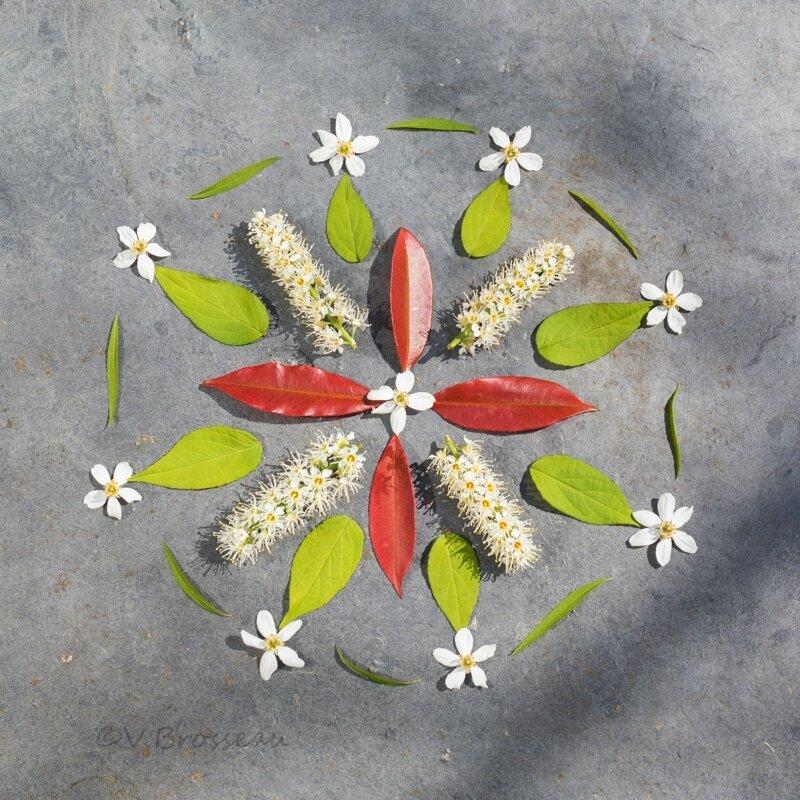 mandala-fleur-feuille17-08