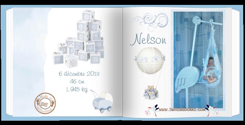 Nelson_modifié-1