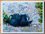 bon_voyage_4