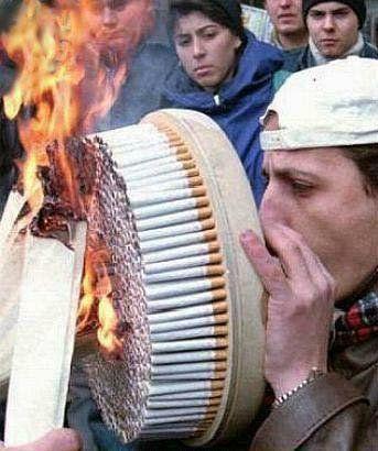 √ Faire Pousser Du Tabac Dans Son Jardin