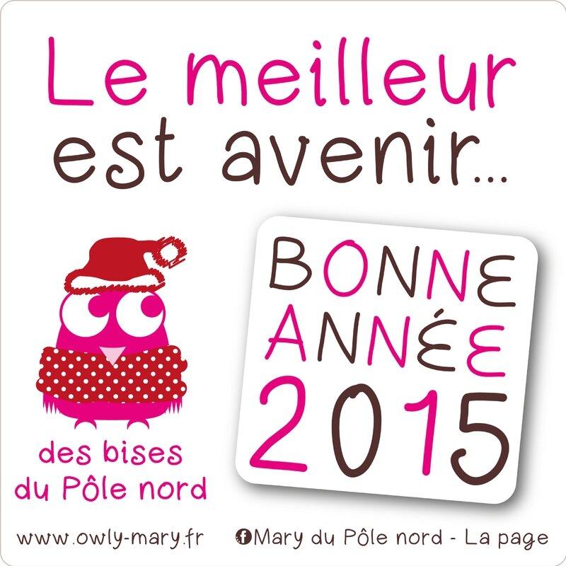 bonne annee nouvel an voeux 2014 owly mary du pole nord
