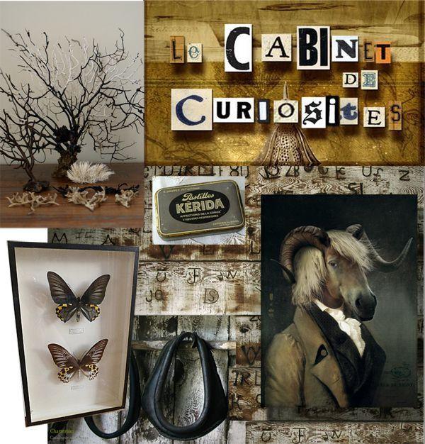 tendance-cabinet-curiosite