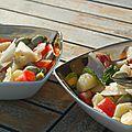 Récolter ses premières fèves... et les cuisiner dans leur ensemble !