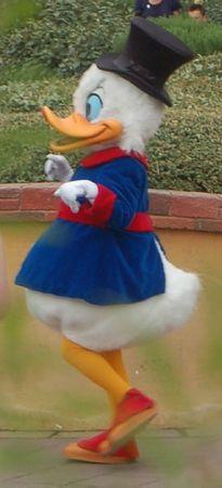 Disney 29-30 05 11 (911)