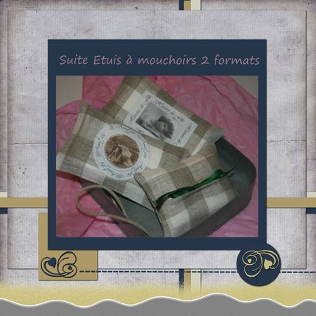 bétuis mouchoirs2