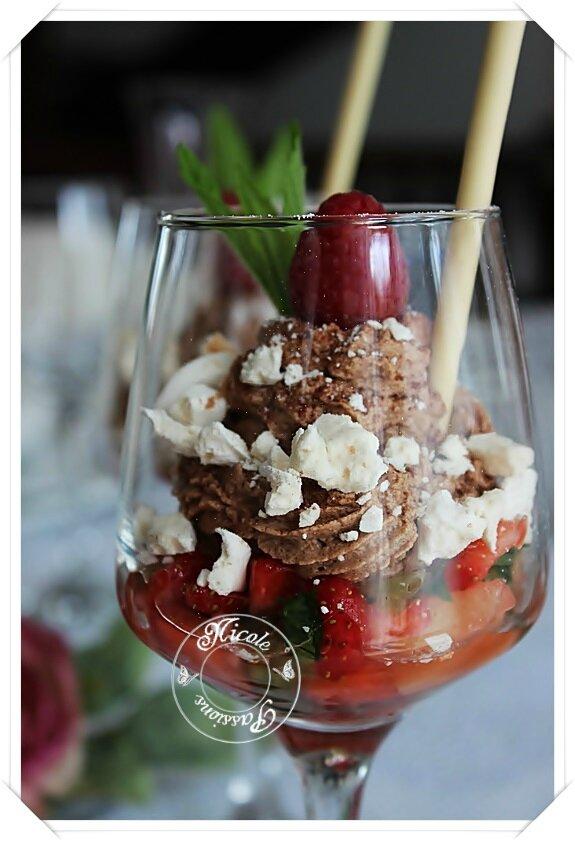 Mousse au chocolat et sa sous-couche toute fruitée......