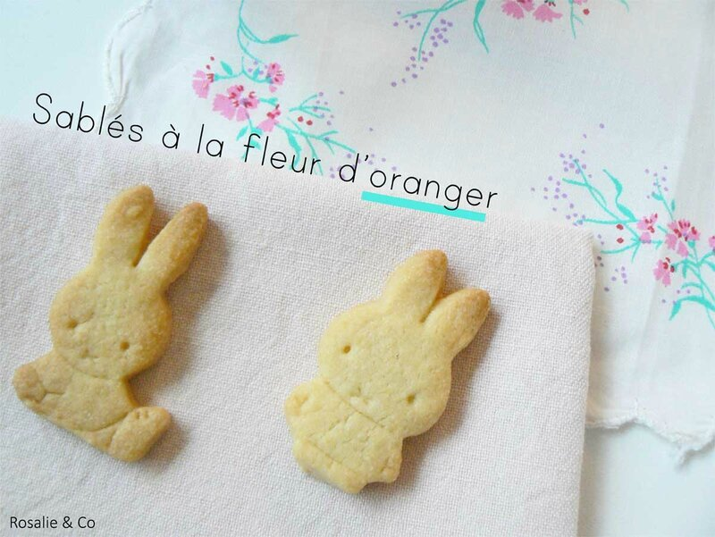 sables-miffy-titre