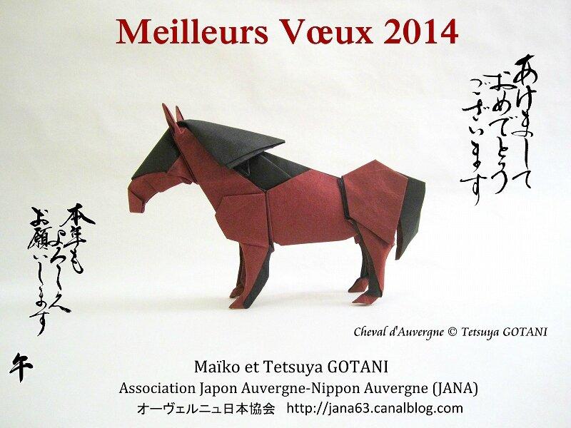 s-Carte voeux JANA 2014