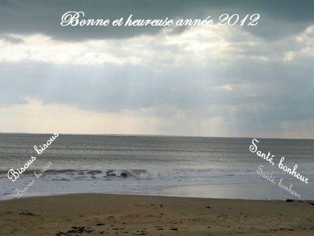 Bonne année 2012 chez Mamounette de Vendée