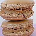 MACARONS meringue italienne  la pte de spculoos.