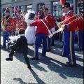 Carnaval de limoges 2011 (suite du défilé)