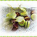 Macarons ganache gianduja.......challenge