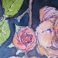 - 156 - rose du jardin