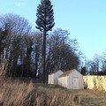 Le pylône arbre de Bouygues Telecom & SFR (02/01/2008)