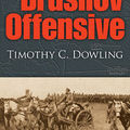The brusilov offensive