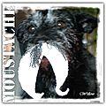 The serials crocheteuses sc153 : la moustache