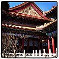 Visite du summer palace, beijing