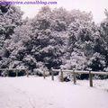 neige 2002c