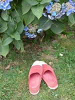 Blog 14-08-16 5