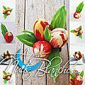 Un bouquet de tulipes à croquer…
