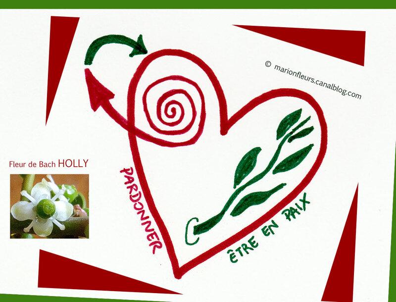 pardonner_etre_en_paix_fleur_de_bach_holly_marionfleurs