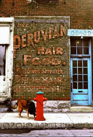 Peruvian_Hair_Food_Daniel_Heikalo_1977