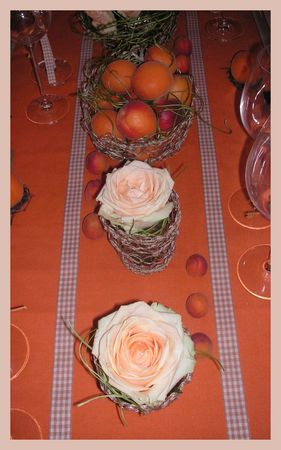 2009_07_07_table_abricots