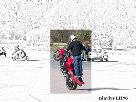 Motards_acrobates_8
