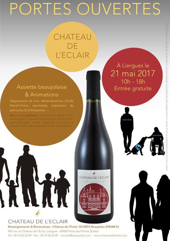 Affiche JPO Château et Handi chiens 2017 vdef