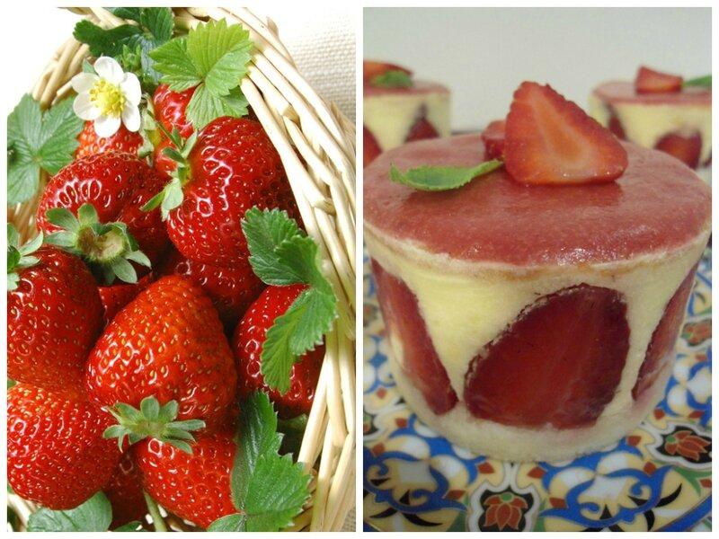 fraisierszoom